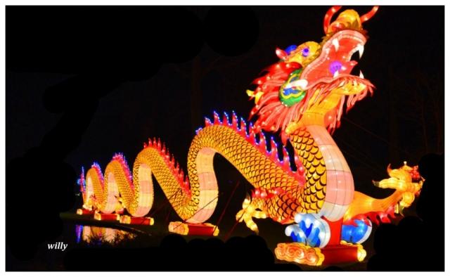 antwerpen,zoo,dierentuin,china light,chinees nieuwjaar